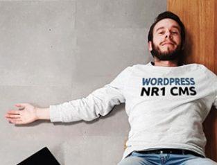 30% van meest succesvolle websites gebruikt Wordpress
